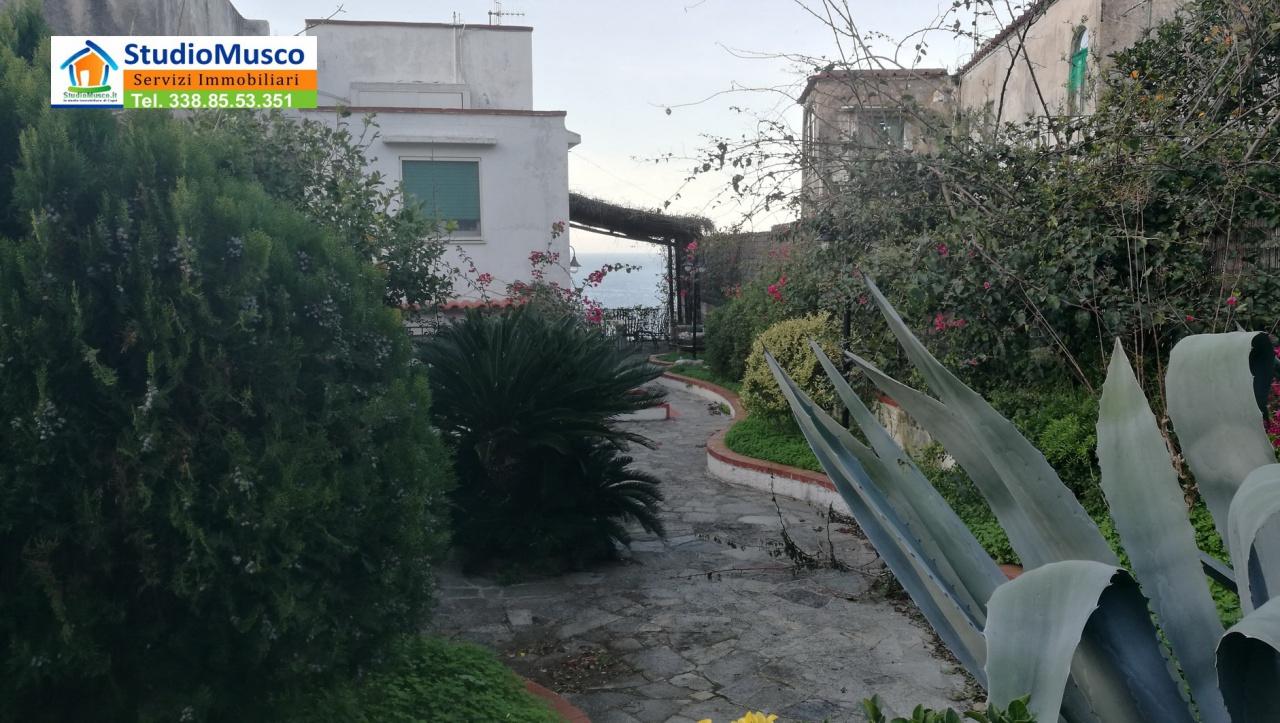 cerca Capri  APPARTAMENTO INDIPENDENTE VENDITA